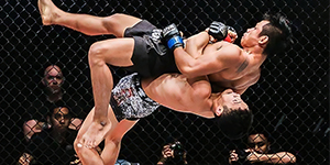 style banner-mma 1
